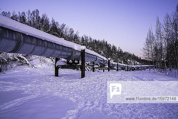 Trans-Alaska-Pipelinesystem  Fairbanks  Alaska  Vereinigte Staaten von Amerika  Nordamerika