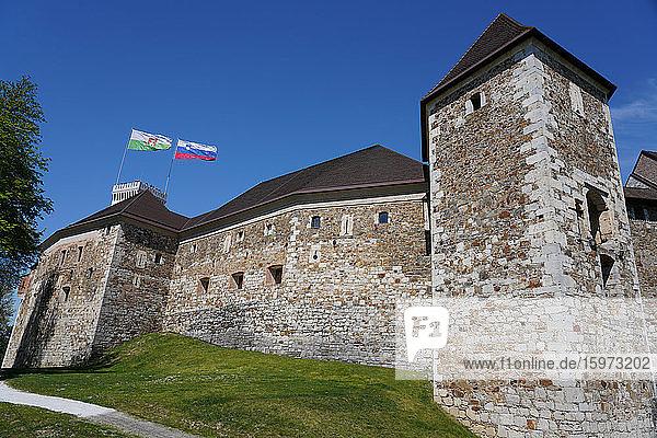 Die Mauern der Burg von Ljubljana  Ljubljana  Slowenien  Europa