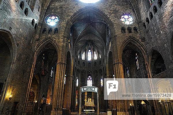 Kathedrale der Heiligen Maria von Girona  Girona  Katalonien  Spanien  Europa