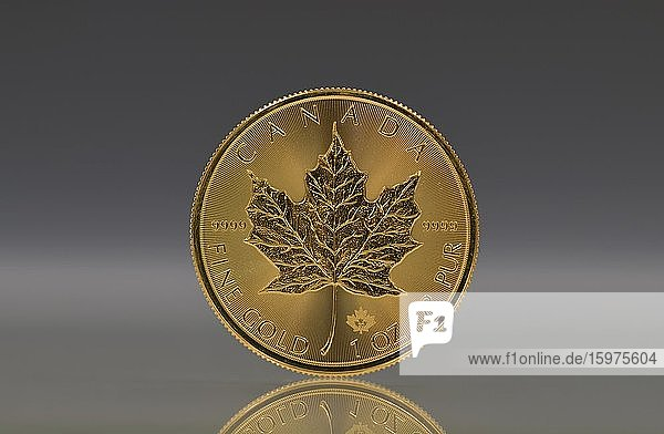 Canadian gold coin 1 ounce  maple leaf back  maple leaf  Canada  North America