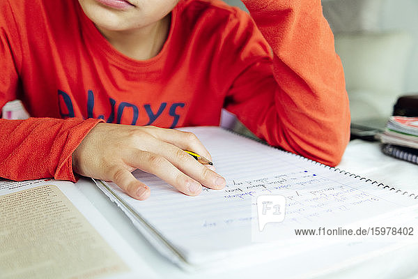 Boy studying from book while sitting at home