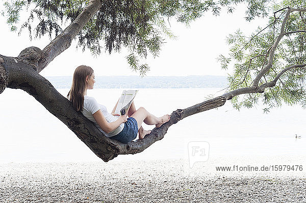 Woman sitting on tree trunk reading magazine at Ammersee  Germany