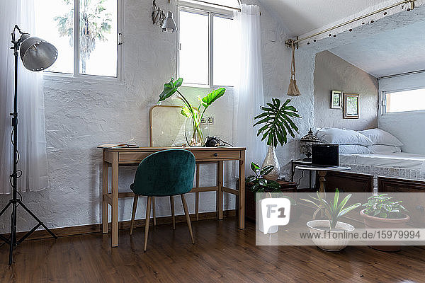 Furniture and potted plants in bedroom at home