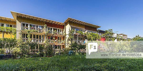 Germany  Baden-Wurttemberg  Freiburg im Breisgau  Lawn in front of houses in modern suburb