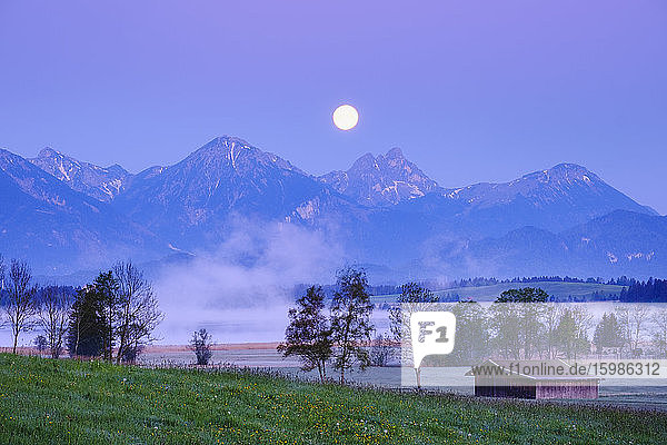 Germany  Bavaria  Halblech  Bannwaldsee lake at foggy dawn with full moon shining over Tannheim Mountains in background
