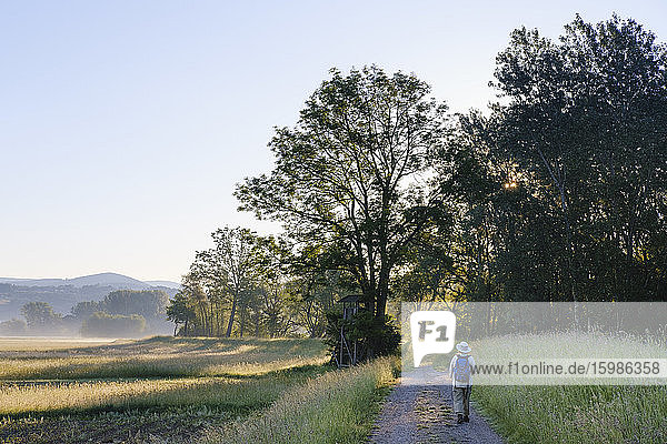 Full length of senior woman hiking on footpath towards forest  Bavaria  Germany