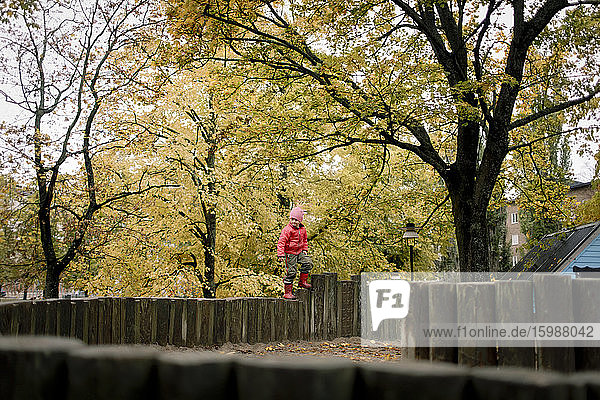 Boy standing on wooden fence against autumn trees