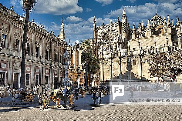 Plaza del Triunfo with Seville Cathedral  Seville  Andalusia  Spain.