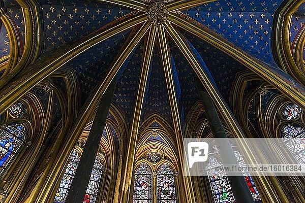 Vault  interior view  lower chapel  Sainte-Chapelle  Île de la Cite  Paris  France  Europe