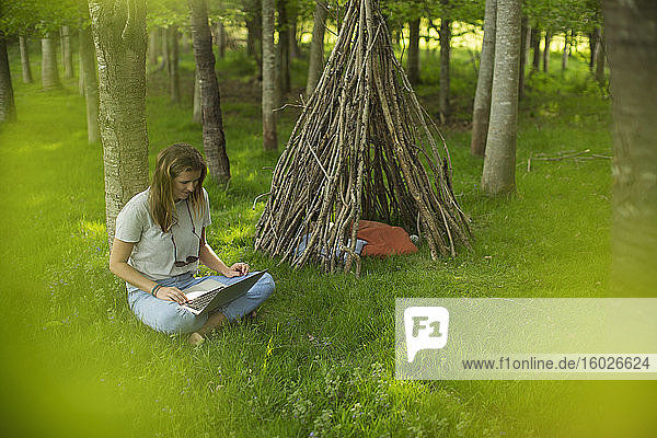 Young woman using laptop at branch teepee in woods