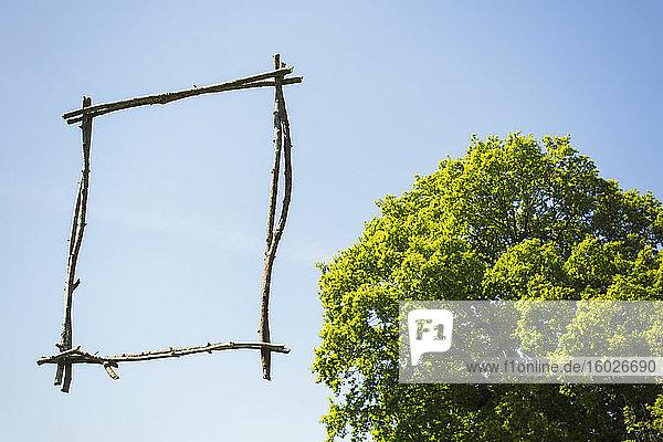 Holzstock-Bilderrahmen vor sonnenblauem Himmel mit Baum