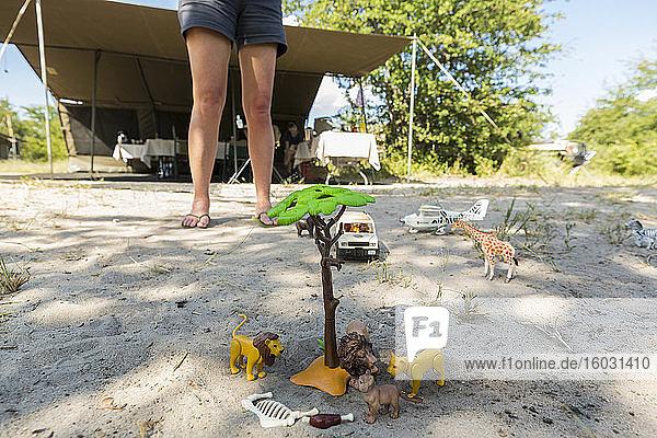 Eine Safari-Szene im Sand  Spielzeugjeeps und Safari-Tiere auf dem Boden und die Beine eines Schaulustigen.