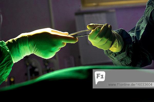 Nahaufnahme der Krankenschwester  die dem Chirurgen im Operationssaal ein Skalpell reicht.