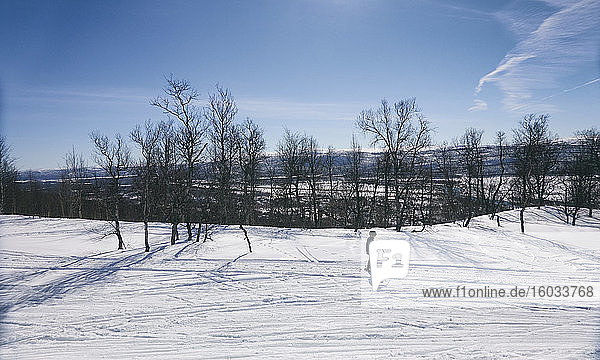 Young boy cross-country skiing in Vasterbottens Lan  Sweden.