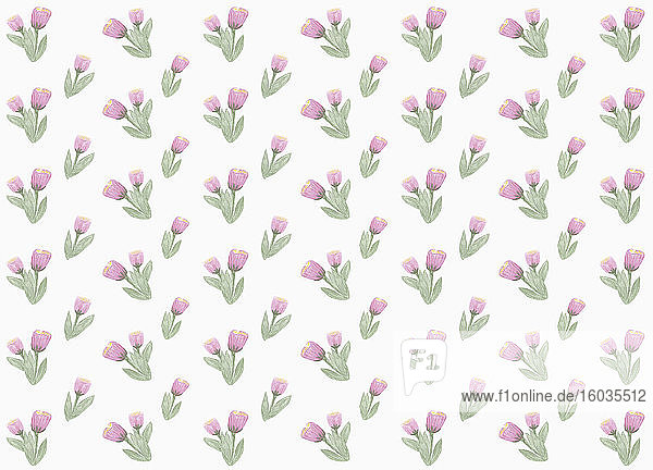 Purple flower pattern on white background