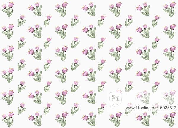 Violettes Blumenmuster auf weißem Hintergrund