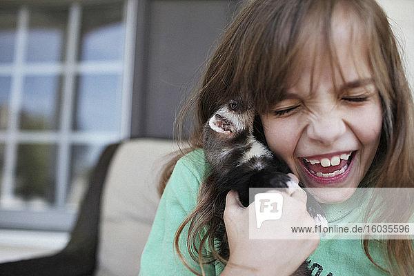 Glückliches Mädchen lacht und hält Frettchen