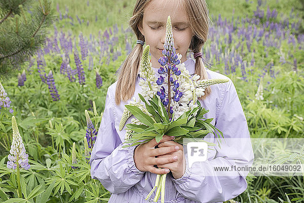 Portrait of girl with eyes closed standing in front of flower field holding bunch of lupines
