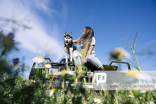 Woman stroking husky while sitting on hood against sky during road trip