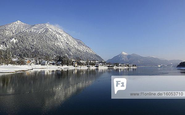 Germany  Bavaria  Shore of LakeWalchen in winter