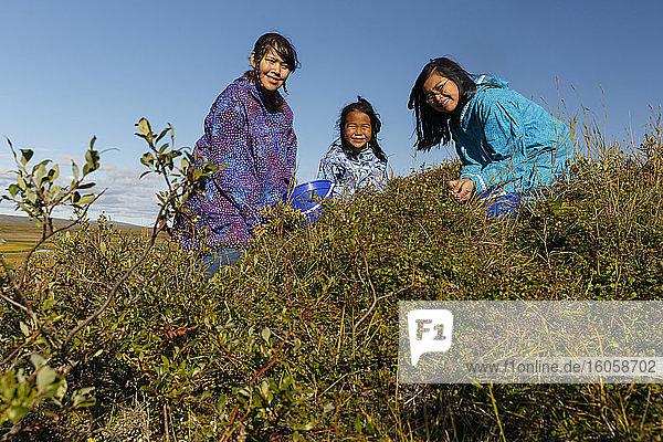 Einheimische Athabaskerinnen aus Alaska pflücken in traditionellen Kuspuks Blaubeeren auf der Tundra vor Nome  Sommer in Alaska