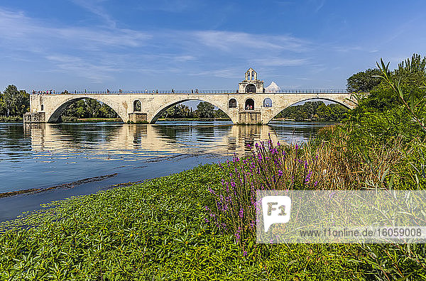 Le Pont d'Avignon over the Rhone River; Avignon  France