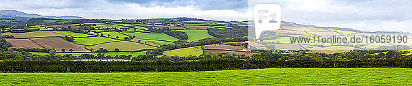 Panorama of hilly sloped patchwork of fields framed by trees and shrubs; Cornwall County  England