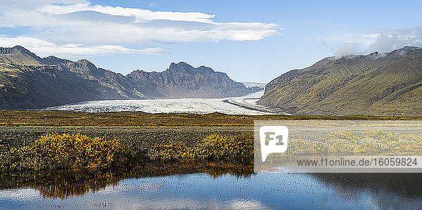 A glacier lies between mountains with autumn coloured foliage in the foreground; Hornafjordur  Eastern Region  Iceland