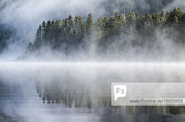 Lake and trees with morning mist; Quebec  Canada