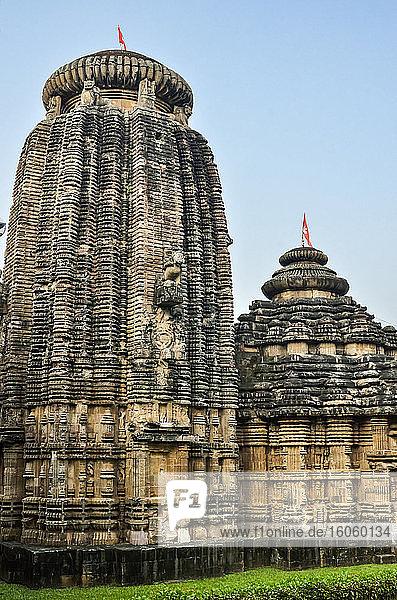 Chitrakarini Temple  Lingaraja Temple Complex; Bhubaneswar  Odisha  Indi