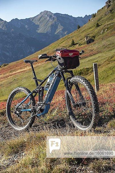 Mountainbike in herbstlich verfärbter Berglandschaft der Stubaier Alpen  Freizeitarena Bergeralm  Bikepark Tirol  Gries am Brenner  Tirol  Österreich  Europa