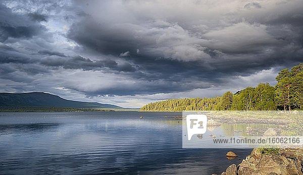 Gewitterwolken über See  Gällivare  Norrbottens län  Schweden  Europa
