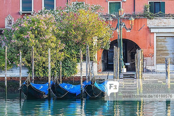 Parkende Gondeln am Canale Grande bedingt durch die Corona-Pandemie  Venedig  Venetien  Italien  Europa