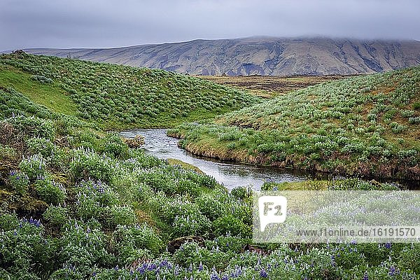 River seen from road number 264 to Keldur farm in south part of Iceland.