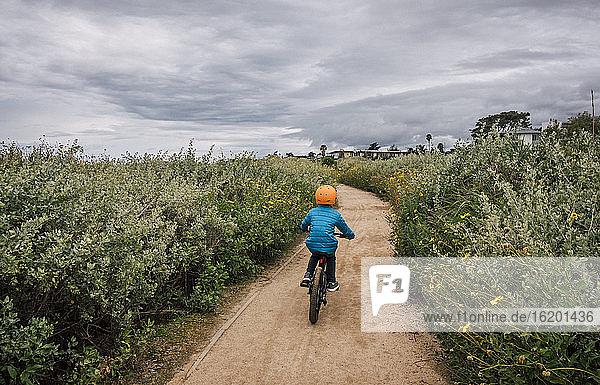 Rückansicht eines Jungen  der einen Weg mit der beidseitig wachsenden Busch-Sonnenblume  Encelia californica  in der Nähe von Santa Barbara  Kalifornien  USA  entlang radelt.