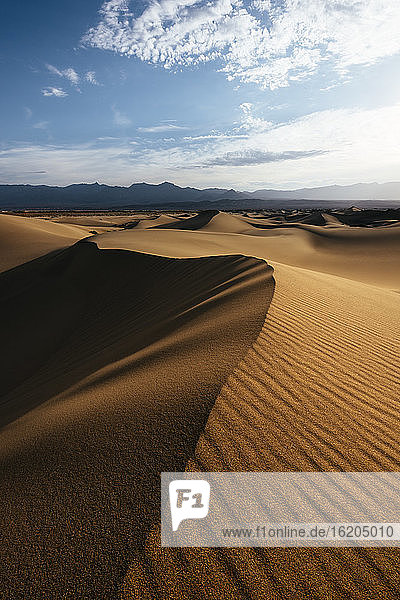 Mesquite Sand Dunes at dawn  Death Valley National Park  California  USA