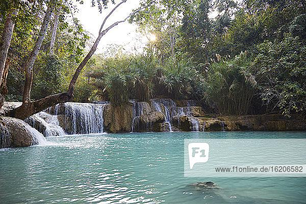 Kuang Si Falls  Luang Prabang  Las