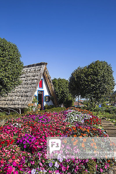 Traditionelles Haus mit steilem  dreieckigem Strohdach  Santana  Madeira  Portugal  Atlantik  Europa