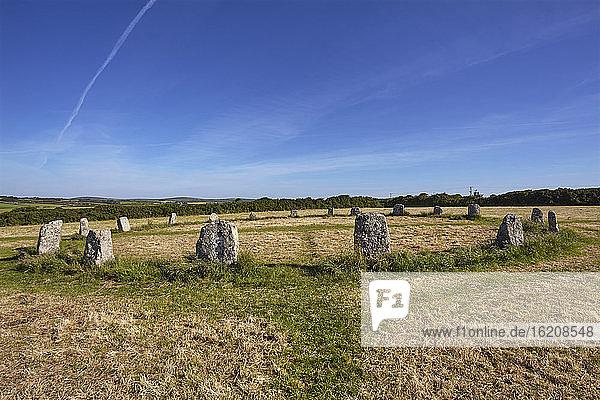 Prähistorischer Steinkreis  Merry Maidens  auf einem Feld in der Nähe von Mousehole  bei Penzance  Westcornwall  England  Vereinigtes Königreich  Europa