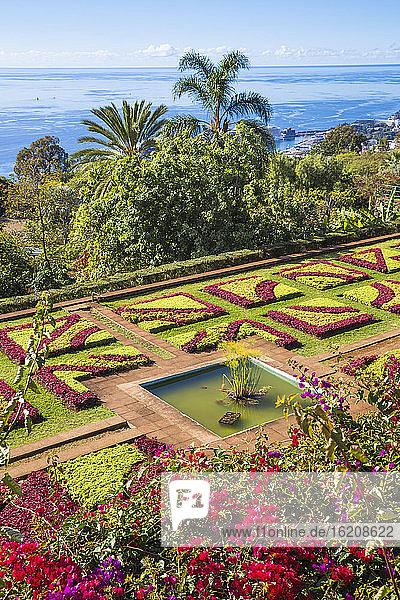 Botanische Gärten  Monte  Funchal  Madeira  Portugal  Atlantik  Europa