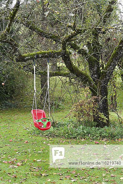 Deutschland  Kinderschaukel im Garten Deutschland, Kinderschaukel im Garten