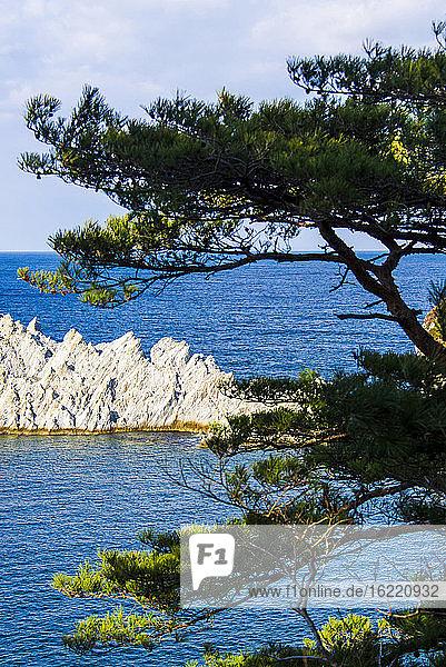 Jodoga. Entlang des Michinoku Coastal Trail  Tohoku  Honshu  Japan.