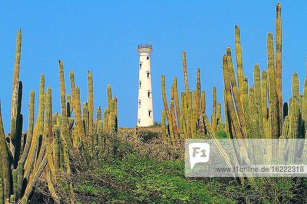 Dutch Antilles. Aruba. California lighthouse.