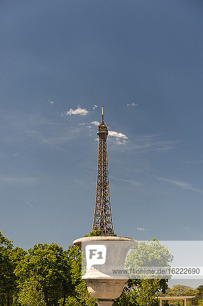 Eiffel tower like rising from an outdoor vase  Paris  France