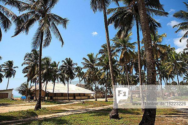 Tanzania  Zanzibar (Unguja island)  Pwani Mchangani.