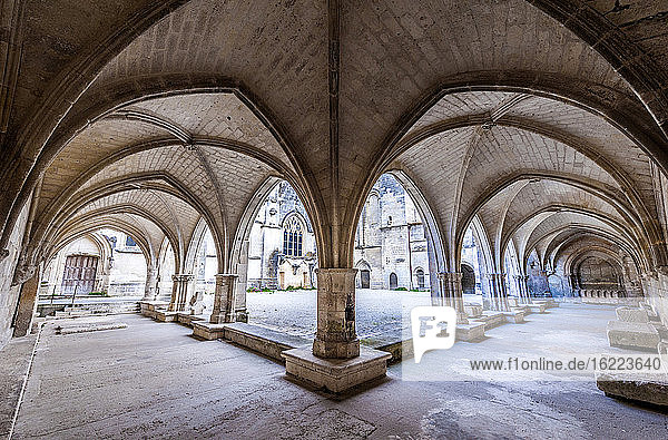 France  Charente Maritime  Saintes  cloister of Saint Peter's cathedral