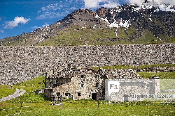 Frankreich  Savoyen  Kühe und verlassener Bauernhof auf den Almen am Fuße der Berge und Gletscher des Mont Cenis col