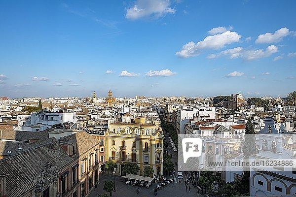 City view  view over the old town from the tower La Giralda  with Plaza Virgen de los Reyes  Cathedral of Seville  Seville  Andalusia  Spain  Europe