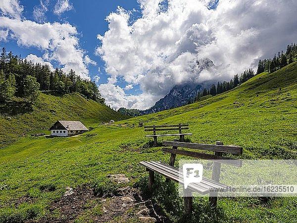 Aussichtsbank auf der Halsalm  Reiteralpe  Nationalpark Berchtesgaden  Ramsau  Berchtesgadener Land  Oberbayern  Bayern  Deutschland  Europa