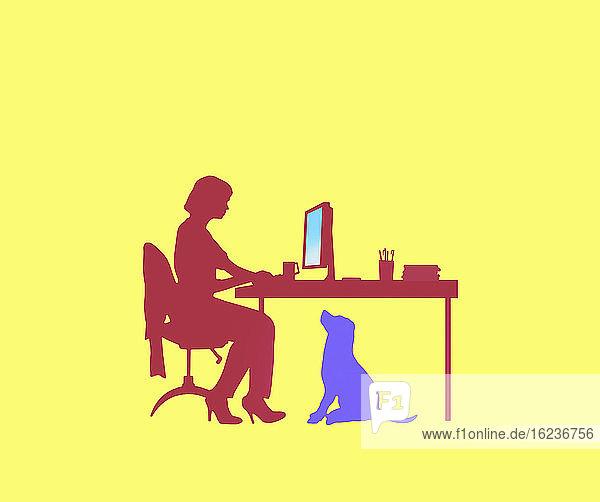 Hund sieht Frau beim Arbeiten im Home Office zu